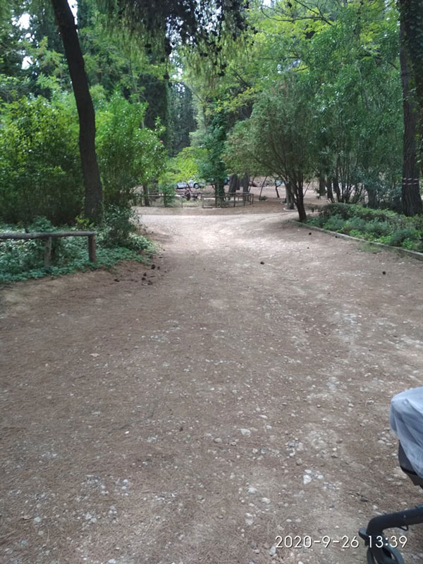 Βόλτα και πικ νικ στο βοτανικό κήπο στο Χαϊδάρι